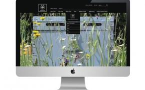 Apivita Website