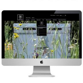 website02B-LOW-web